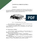 11.Campo das correntes.pdf