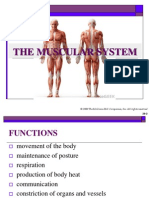 The Human Muscular System.pdf