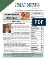 September-October Sinai News 2013