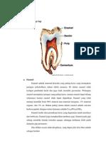 Struktur Histologi Gigi.docx