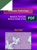 prostatepathology-091013220052-phpapp02