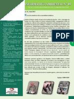 Boletín Informativo N° 09