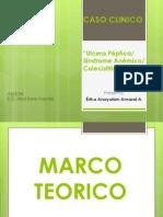 Caso Clinico_erika Amaral (3)