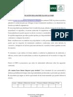 PLANIFICACIONMATRICULA_2013 (COIE)