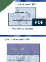 1 Introducere SAS