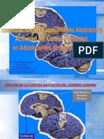 FelipeMedina-estimulación del razonamiento abstracto