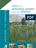 14 Cañada Leonesa.pdf