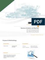 Computerworld Business Analytics and Big Data 2013
