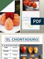 El Chontaduro