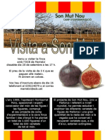 Cartell Visita Figueres