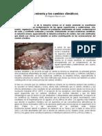 La Mineria y Los Cambios Climaticos