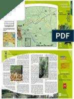 AracenaCorteconcepcion.pdf