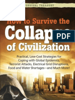 How to Survive the Collapse of Civilization