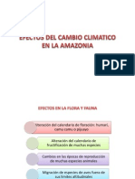 Efectos CC Amazonia