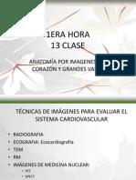 Sem 7 c 13 Anatomia Scv