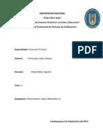 Reporte de Hacia una Teoria de la Didactica de la Matematica-Cienfuegos Lopez Jessica