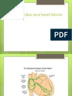 Bradycardias and Heart Blocks (2)