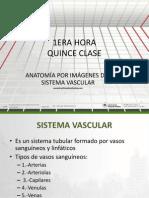Sem 8 c 15 Anatomia Del s. Vascular