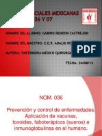 Normas Oficiales Mexicanas 036 y 07