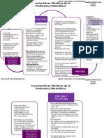 Características Plásticas de la Prehistoria