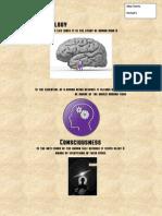 psychology metaphors