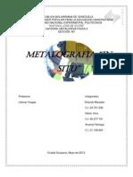 Metalografia in Situ