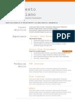 Programer - CV Template