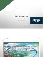 Tema 3 Precipitacion