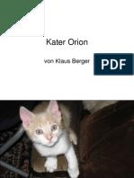 Kater Orion