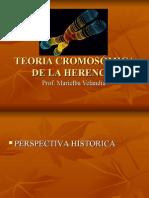 TEORIA CROMOSÓMICA DE LA HERENCIA
