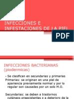 11infeccioneseinfestacionesdelapiel-121226193107-phpapp01