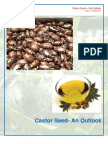 2313_Castor_seed_Outlook_2013_04_08