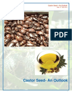 2313_Castor_seed_Outlook_2013_04_08
