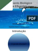 Atual Bioqu�mica.pptx