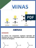 14.Aminas-y-Aminoácidos