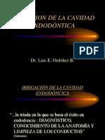 IRRIGACION DE LA CAVIDAD ENDODÓNTICA