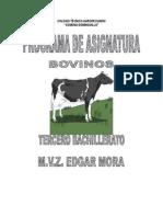 Guia Bovinos Pampas