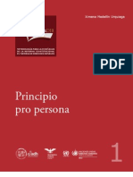 Archivos-Principio Pro Persona