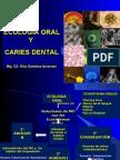 Ecología Oral y Caries Dental