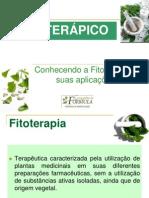 Prescric3a7c3a3o de Fitoterc3a1picos Limites e Possibilidades Uma Abordagem Farmacc3aautica Martha Vasconcelos