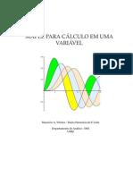Calculo-I-Maple.pdf
