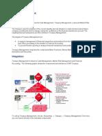Treasury Management 2013.doc