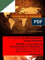 SEMINÁRIO  -  Ambiente de marketing