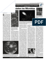 10 Ago 09 Microbios