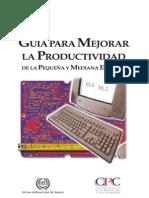 Manual Productividad
