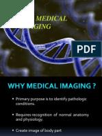 Medical -Imaging