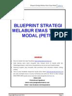 Blueprint Pet m