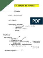 Tcnicas_proteinas