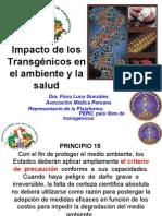 Transgénicos - Ayacucho