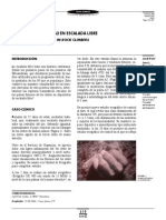 Caso Clinico Polea A2 419 109